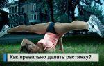 Комплекс упражнений для растяжки мышц – 50 упражнений для растяжки мышц всего тела