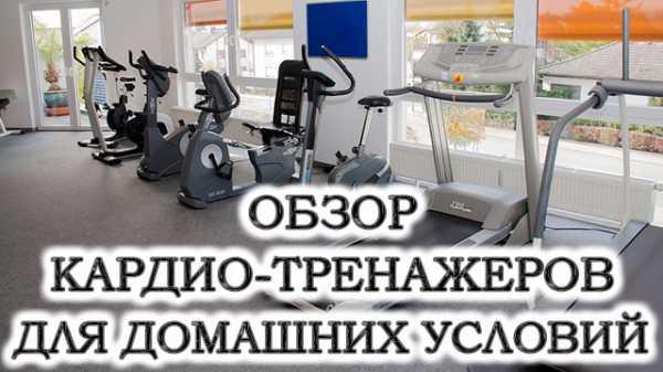 Кардиотренажеры плюсы и минусы  ТОП лучших 2019